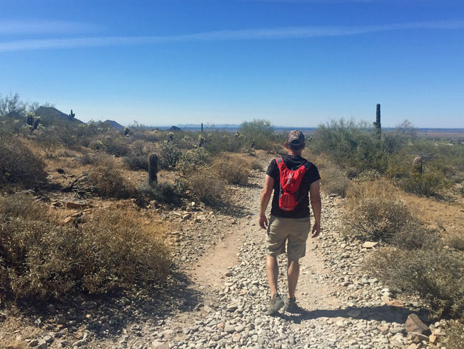 Lost Dog Wash Trail in the McDowell Mountain Preserve